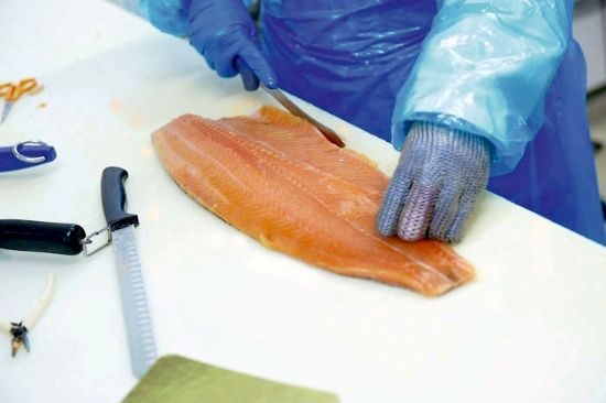 About Polar Salmon Hjerting Laks